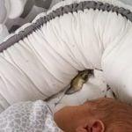 Fazy snu u niemowląt